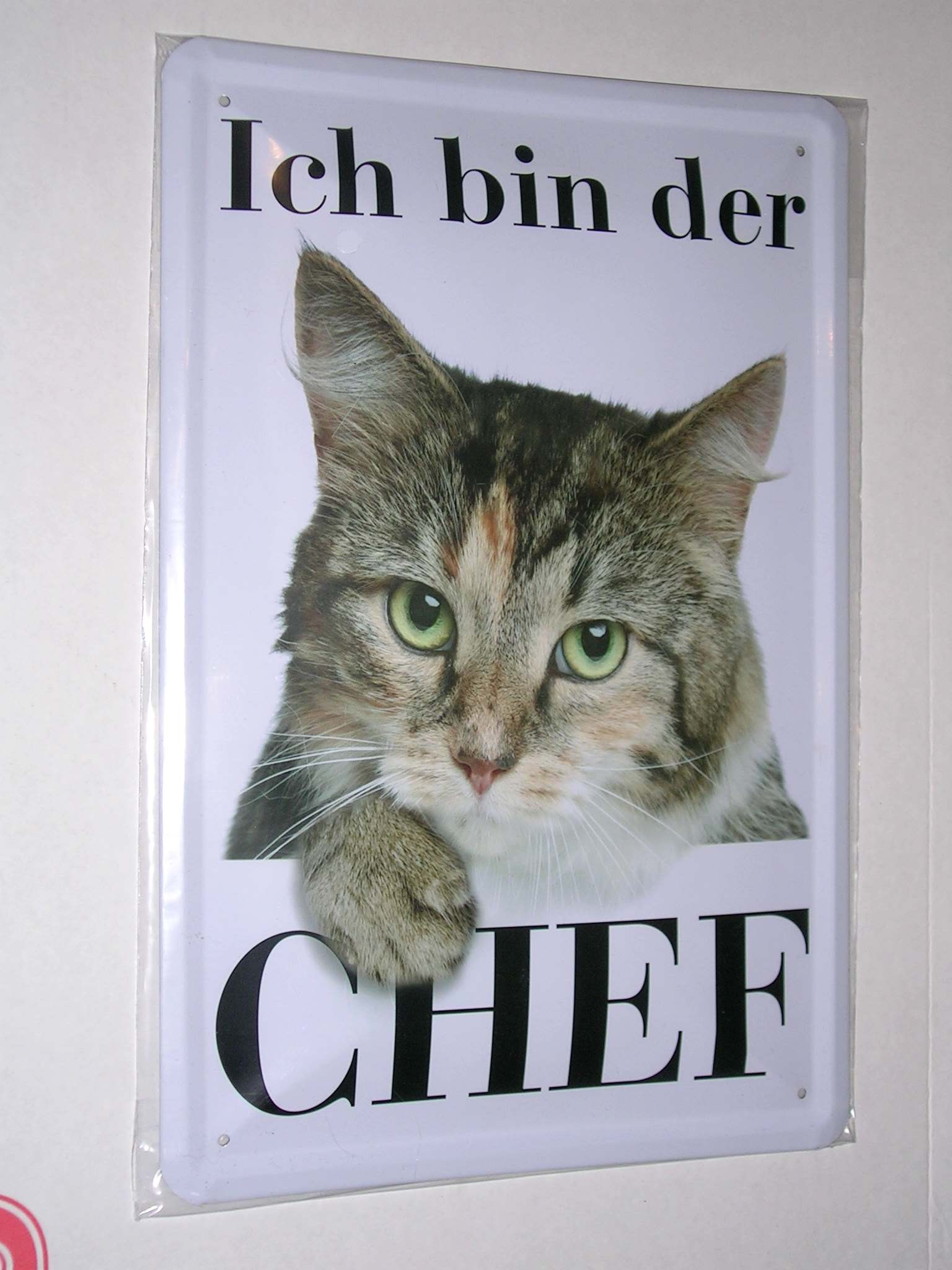 blechschild ich bin der chef 20 x 30 cm katze katzen neu. Black Bedroom Furniture Sets. Home Design Ideas